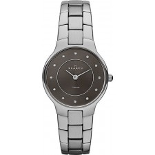 Женские часы Skagen SKW2008 Links Titanium